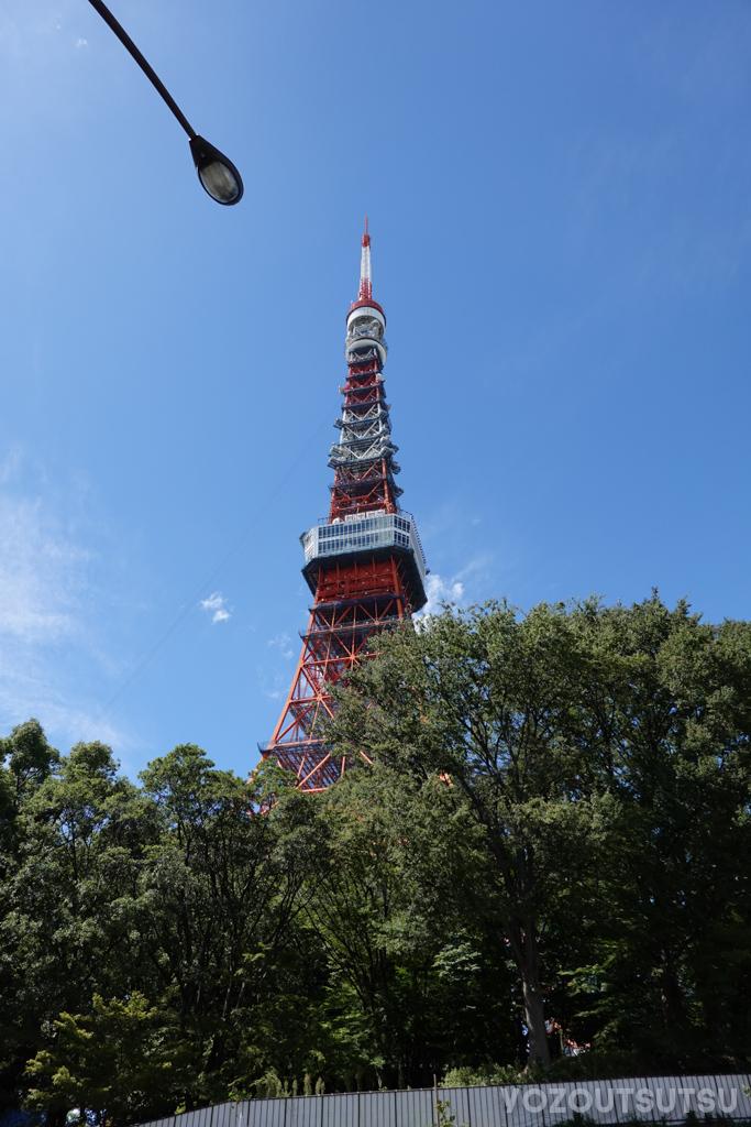 近づいた東京タワー