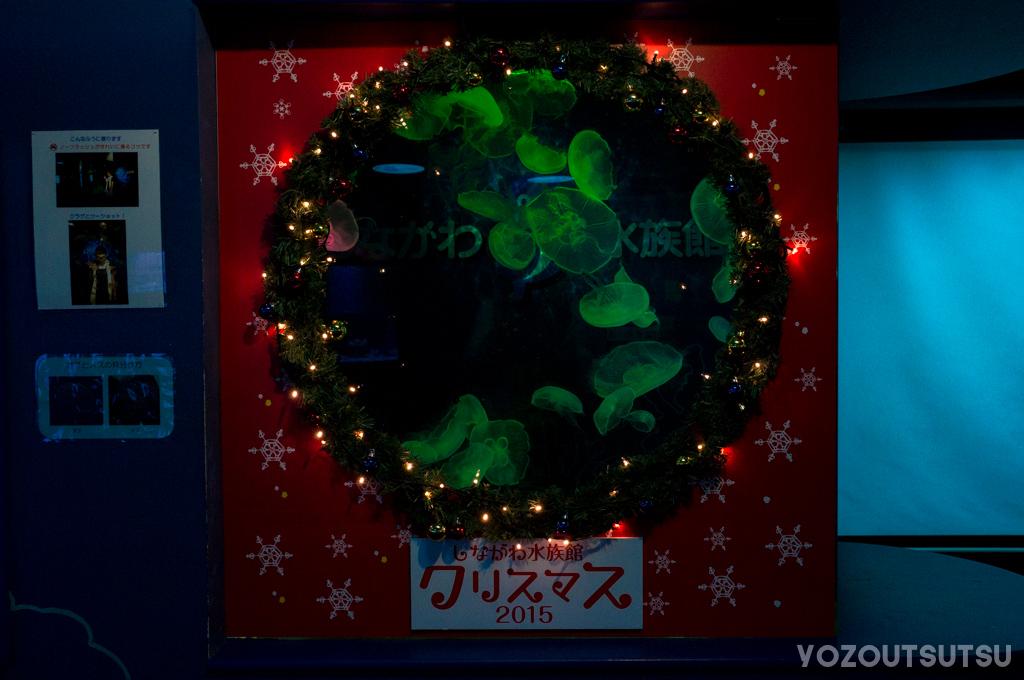 クリスマス仕様のミズクラゲ