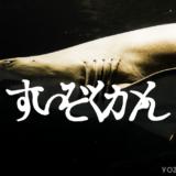 【東京都の水族館】しながわ水族館の行き方と感想