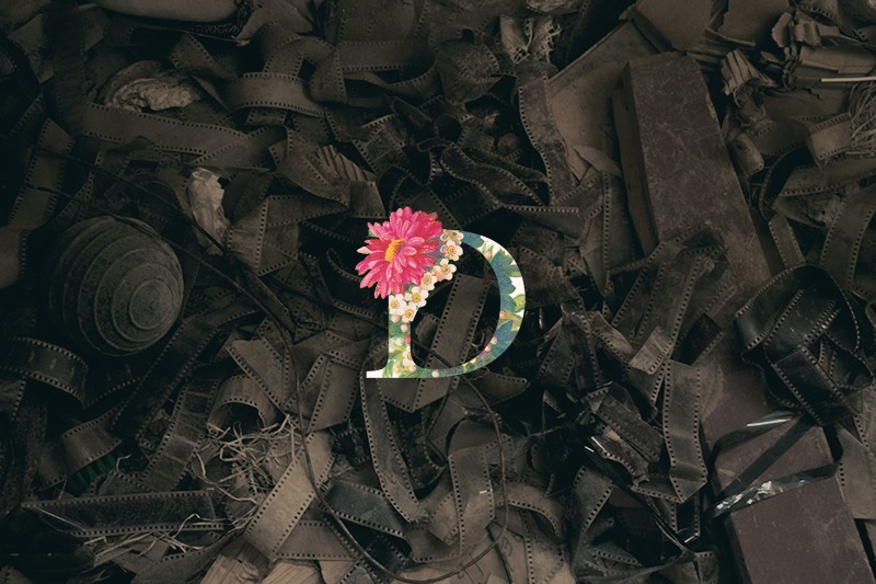 WACK PEDRO zoozooseaアルバムレビューBiSH アユニ・D ソロプロジェクト レビュー・感想