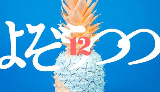 【ブログ】開設12ヶ月目の記録【1周年】