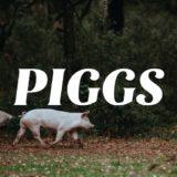 公開されたPIGGSの曲がかっこよいのでおすすめ