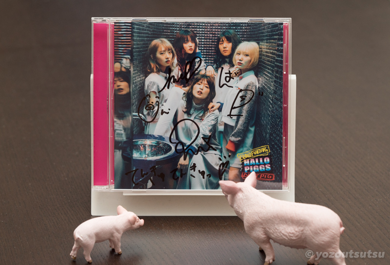 【Ryan.B】PIGGS「HALLO PIGGS」がおすすめすぎる1stアルバム【グラムロック】
