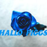 HALLO PIGGSの紹介「おすすめアルバム」