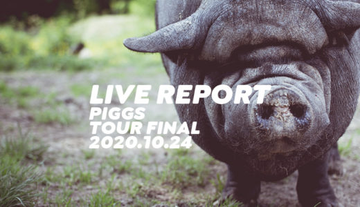 PIGGSはじめましてPIGGSですツアーファイナル【ライブレポート】