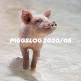 【PIGGS LOG】2020年5月のPIGGSの活動を振り返る【ネットニュースまとめ】
