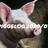 【PIGGS LOG】2020年7月のPIGGSの活動を振り返る【ネットニュースまとめ】