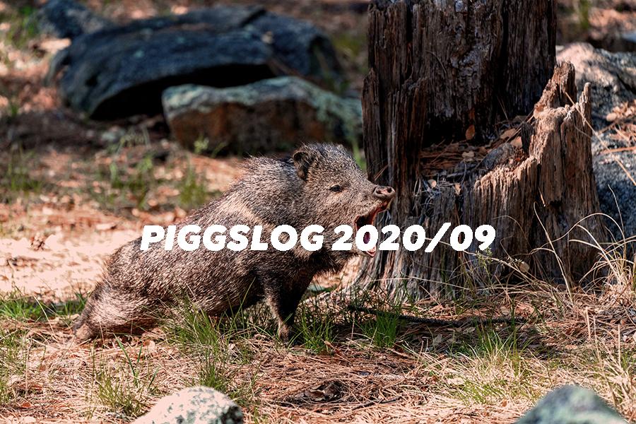PIGGSネット記事まとめ2020年9月【PIGGS LOG】株式会社プープーランド