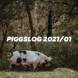 【PIGGS LOG】2021年1月のPIGGSの活動を振り返る【ネットニュースまとめ】