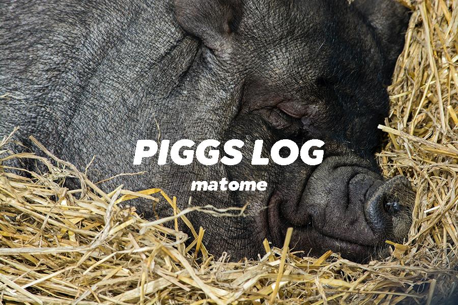 PIGGSネット記事・インタビュー・対談まとめ2020年8月【PIGGS LOG】株式会社プープーランド