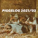 【PIGGS LOG】2021年3月のPIGGSの活動を振り返る【ツイート・ネットニュースまとめ】