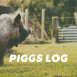 【PIGGS LOG】2021年9月のPIGGSの活動を振り返る【ツイート・ネットニュースまとめ】