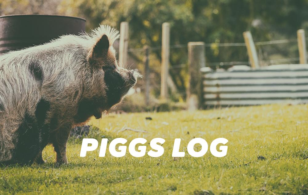 2021年のPIGGSの活動・メディア掲載